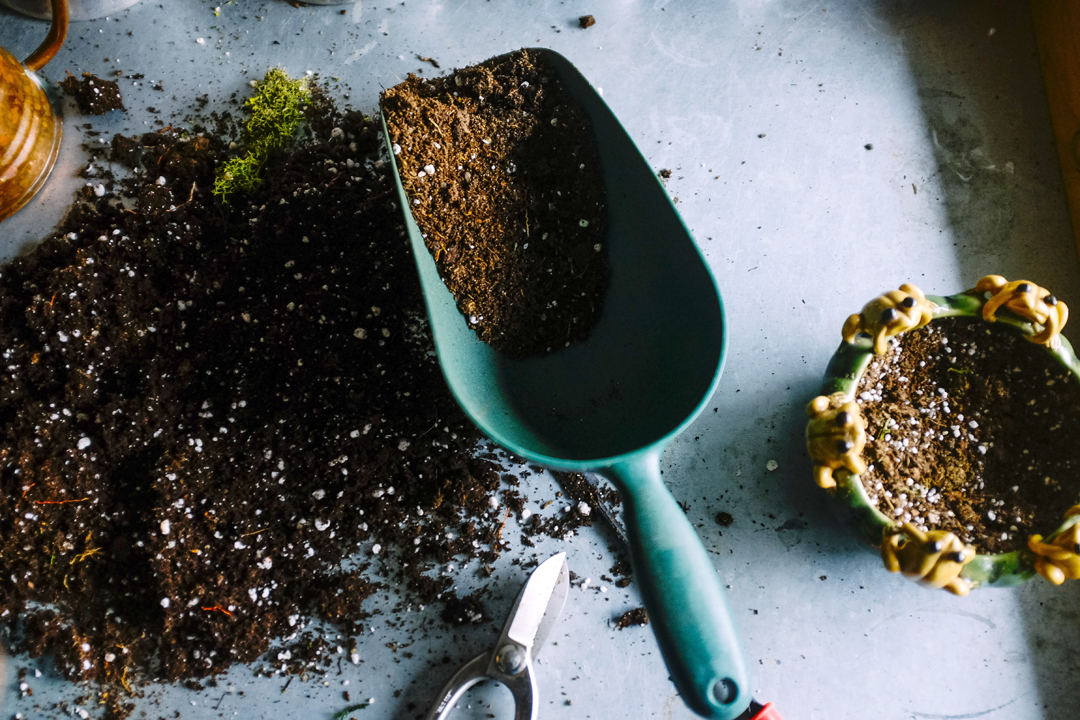 Image: soil mix with scoop. Photo source: Neslihan Gunaydin, Unsplash