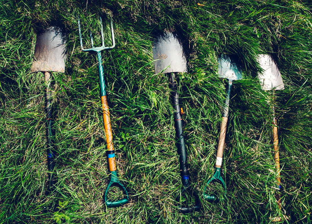 Image: selection of shovels and a pitchfork in grass. Photo source: Dylan Nolte, Unsplash