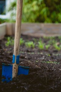 Blue spade in garden bed. Photo source: Markus Spiske, Unsplash