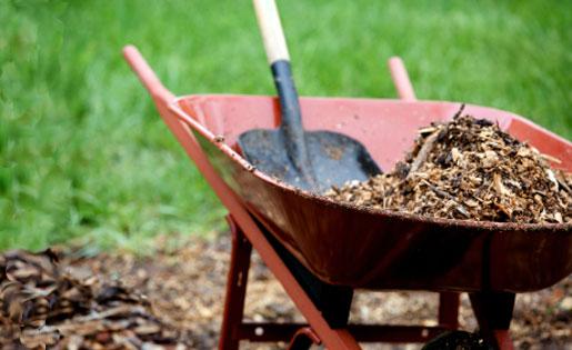 Gardening in extreme heat