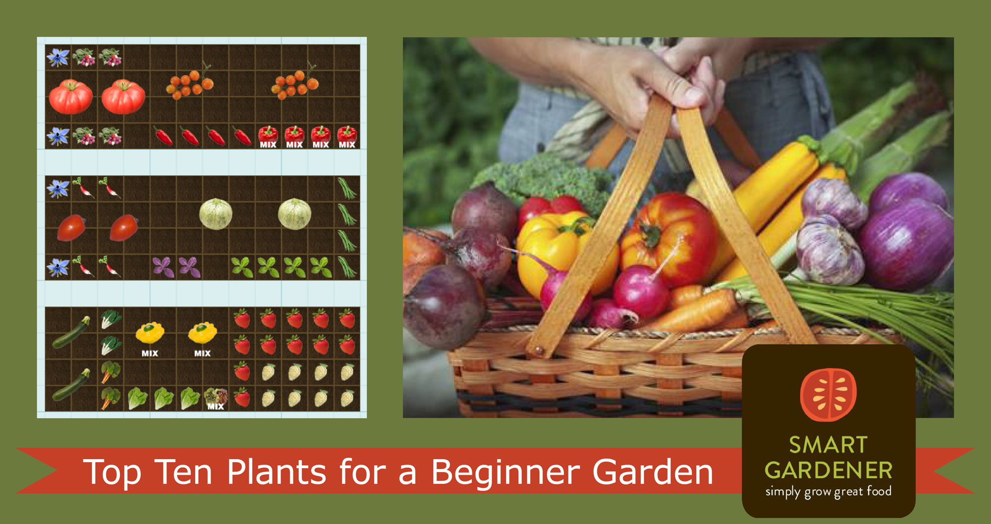 Top Ten Plants for a Beginner Garden