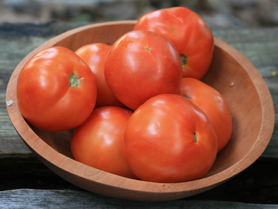 Top Ten Plants for a Beginner Garden: Tomatoes