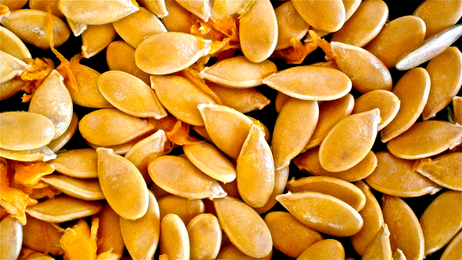 seed saving getting something for nothing image of pumpkin seeds